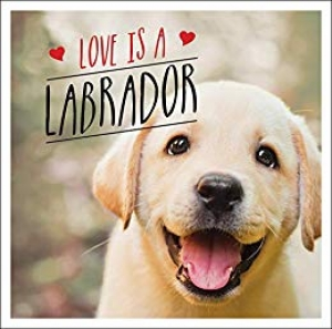 Download Love is a Labrador: A Lab-Tastic Celebration of the World's Favourite Dog free book as epub format