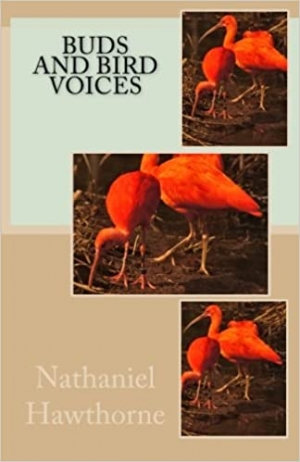 Download Buds and Bird Voices free book as epub format