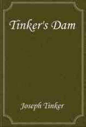 Download Tinker's Dam free book as epub format