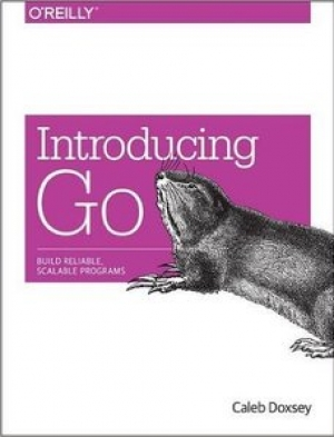 Download Introducing Go free book as pdf format