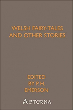 Download Welsh Fairy-Tales and Other Stories free book as pdf format