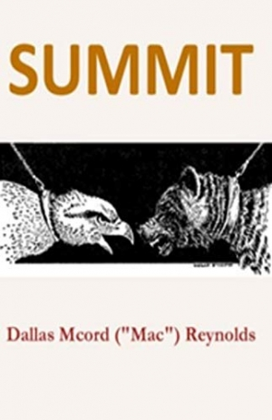 Download Summit free book as epub format