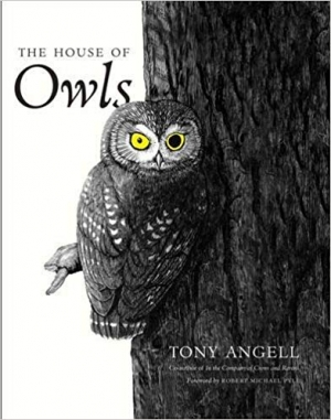 Download The House of Owls free book as pdf format