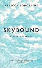 Skybound A Journey In Flight