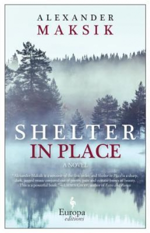 Download Shelter in Place free book as epub format