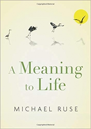 Download A Meaning to Life free book as pdf format