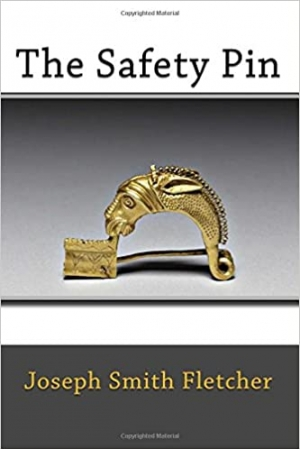 Download The Safety Pin free book as epub format