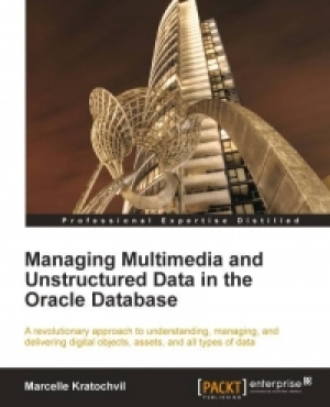 Download Managing Multimedia and Unstructured Data in the Oracle Database free book as pdf format