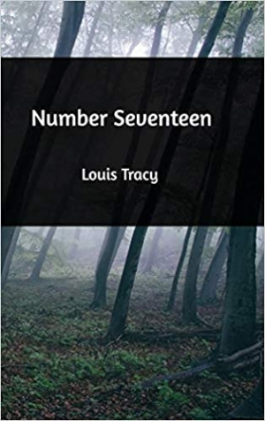 Download Number Seventeen free book as epub format