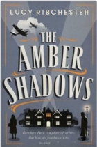 Book The Amber Shadows free