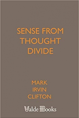 Download Sense from Thought Divide free book as epub format