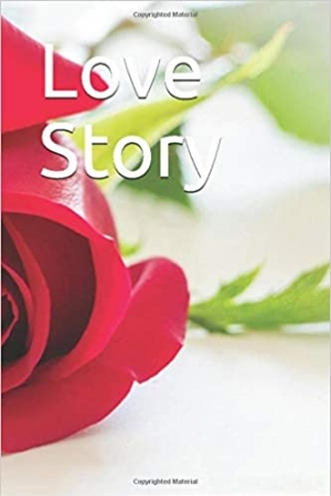 Download Love Story free book as epub format