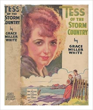 Download Tess of the Storm Country free book as pdf format