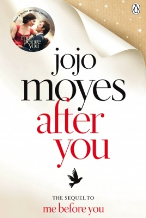 Download After You. free book as pdf format