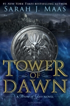 Book Tower of Dawn free