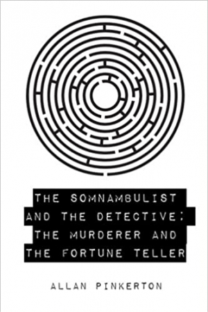 Download The Somnambulist and the Detective free book as epub format