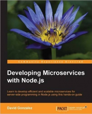 Download Developing Microservices with Node.js free book as pdf format