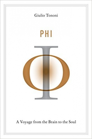 Download Phi: A Voyage from the Brain to the Soul free book as epub format