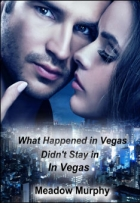 Book What Happened in Vegas, Didn't Stay in Vegas Part 2 free