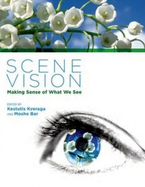Download Scene Vision: Making Sense of What We See free book as pdf format