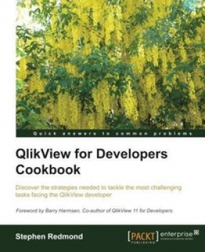 Download QlikView for Developers Cookbook free book as pdf format
