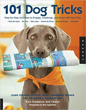 Download 101 Dog Tricks: Step by Step Activities to Engage, Challenge, and Bond with Your Dog free book as epub format