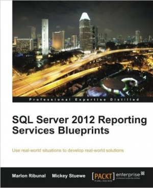 Download SQL Server 2012 Reporting Services Blueprints free book as pdf format