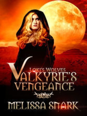 Download Valkyrie's Vengeance free book as pdf format