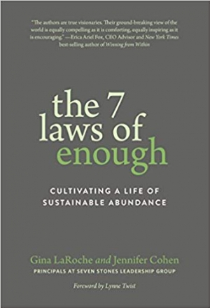 Download The 7 Laws of Enough: Cultivating a Life of Sustainable Abundance free book as epub format