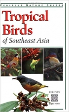 Tropical Birds of Southeast Asia (Periplus Nature Guides)