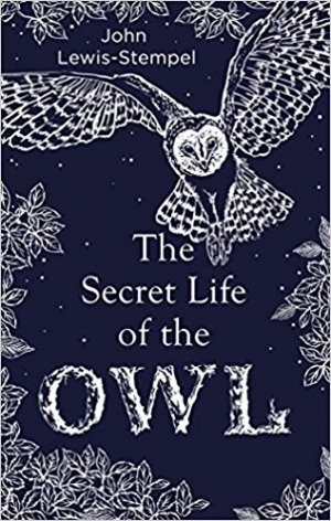 Download The Secret Life of the Owl free book as epub format