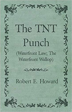 Download The TNT Punch free book as epub format