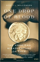 Book One Drop of Blood: The American Misadventure of Race free
