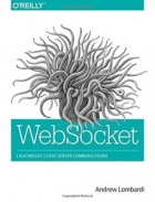 Book WebSocket: Lightweight Client-Server Communications free