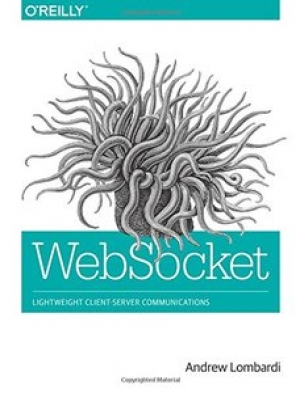 Download WebSocket: Lightweight Client-Server Communications free book as pdf format