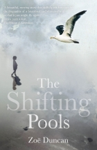 Book The Shifting Pools free