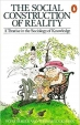 Book Social Construction Of Reality (Penguin Social Sciences) free