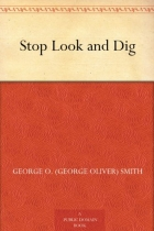 Book Stop Look and Dig free