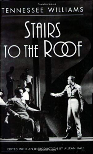 Download Stairs to the Roof free book as epub format