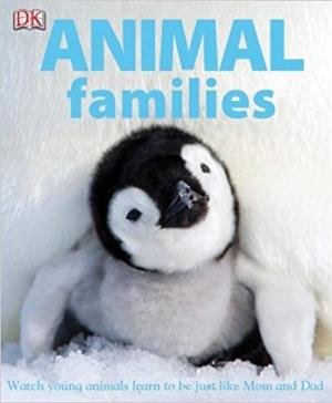 Download Animal Families free book as pdf format