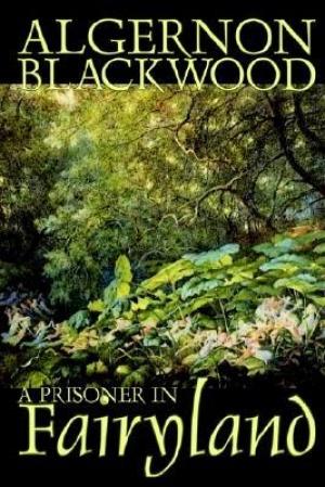 Download A Prisoner in Fairyland free book as pdf format