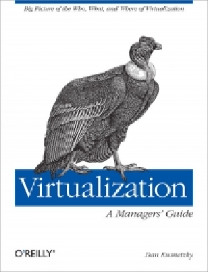 Download Virtualization: A Manager's Guide free book as pdf format