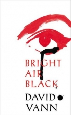Book Bright Air Black free