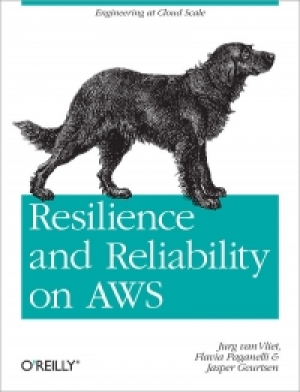 Download Resilience and Reliability on AWS free book as pdf format