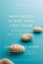 Meditation Is Not What You Think: Mindfulness and Why It Is So Important