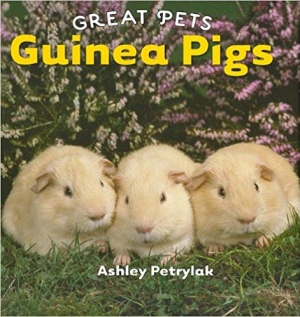 Download Guinea Pigs (Great Pets) free book as pdf format