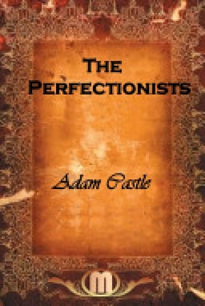 Download The Perfectionists free book as epub format