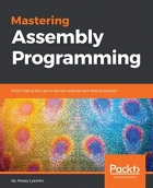 Book Mastering Assembly Programming: From instruction set to kernel module with Intel processor free