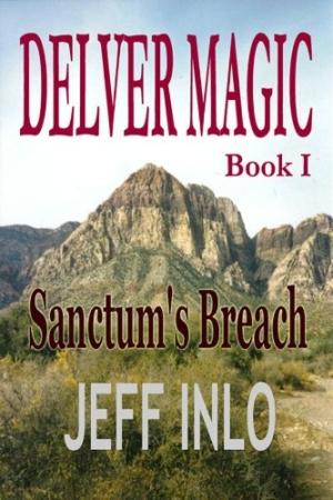 Download Delver Magic Book I: Sanctum's Breach free book as pdf format
