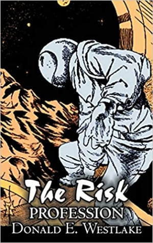 Download The Risk Profession free book as epub format